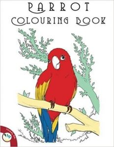 OTTER and parrot colouring - coloring book